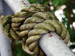 breast rope (robárt shake) Tags: hansekogge bremen hohentorshafen tau strick seil verknotet