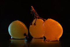 Three Grapes (for Macro Mondays) (Wim van Bezouw, on / off, redecorating my house) Tags: macromondays three grape fruit water drop waterdrop strobist