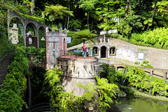2017 SPM1705 Teddy Eckman at Jardim Tropical Monte Palace (Monte Palace Tropical Garden) in Madeira, Portugal (teckman) Tags: 2017 botanicalgardens funchal jardimtropicalmontepalace madeira portugal teddyeckmaniii thadalleneckmaniii pt