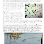 8 Diatom importance thumbnail
