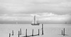 Small sailing boat on the Markermeer (http://www.paradoxdesign.nl) Tags: markermeer sailing nautical black white ship boat water ijsselmeer amsterdam netherlands holland lake zuiderzee south sea fishnets netpole clouds sky horizon
