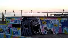 Natural (emanuelzalazar) Tags: monkey mono florida bar rio paraná río graffiti rosariograffiti rosario river sky art arte 画 画儿 艺术 涂鸦 河 罗萨里奥 猴