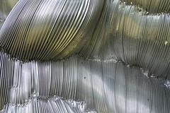DSC_0414 (TonDeg) Tags: wandobject aluminium irisbouwmeester beeldentuinachterdewestduinen