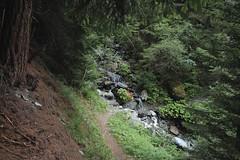 Mottec (bulbocode909) Tags: valais suisse mottec valdanniviers zinal forêts arbres montagnes nature sentiers vert torrents rivières rochers