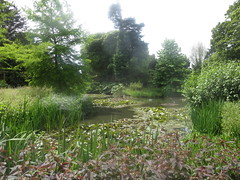 Myddelton House Gardens, Enfield (John Steedman) Tags: myddeltonhousegardens enfield uk unitedkingdom england イングランド 英格兰 greatbritain grandebretagne grossbritannien 大不列顛島 グレートブリテン島 英國 イギリス ロンドン 伦敦 london