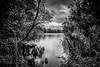 Aquadrome (Indigoplum) Tags: england hertfordshire rickmansworth uk town mood lake aquadrome cloudy