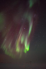 Auroras show the way (redfurwolf) Tags: southpole antarctica auroraaustralis aurora sky stars flag outdoor nature landscape snow ice night nightsky nightphotography redfurwolf sonyalpha a7r sony