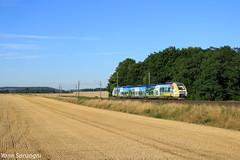 Blond comme les blés (Lion de Belfort) Tags: chemin de fer train xgc agc x 76500 76821 echevannes sncf ter tilchatel