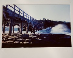 G0280408 (Renton Chen) Tags: sydney australia instax instaxwide wide polaroid 110a polaroid110a nsw bareisland life color 拍立得 拍立得紀錄人生 雪梨 澳洲 新南威爾斯 裸島 workingholiday