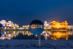 Golden Temple Blue Hour (Ashmalikphotography) Tags: goldentemple bluehour golden reflection sikhism religion