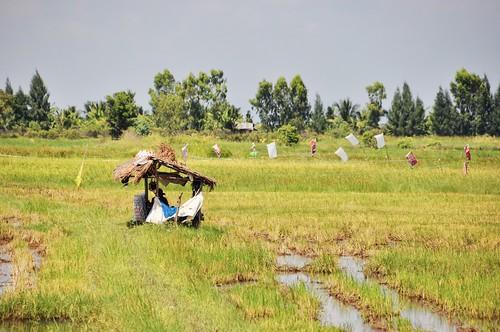 parc national sam roi yot - thailande 75