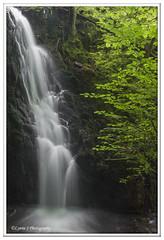 With polariser (Lynne J Photography) Tags: cumbria lakedistricy kellyhalltarn sunrise nikon tarn reflection sunset lonetree lone tree waterfalls longexposure tomgillfalls