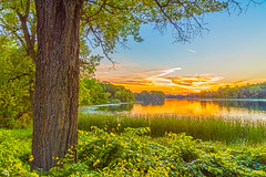 Lake Emily (Daniel000000) Tags: lake tree trees nature natural colorful sky clouds sunset light green summer nikon nikond750 water landscape wisconsin