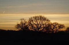 Seen through a train window - dawn on the Lincoln to Nottingham 5 (Street.Watcher) Tags: lincoln nottingham railway sunrise landscape collingham