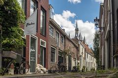 Krommejak, Zwolle (Gerrit Veldman) Tags: krommejak nederland netherlands overijssel sassenpoort zwolle straat street stad city stadsgezicht cityscape poort gate streetview fietsen bikes bycicles olympus epl7