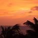 20170414-Aruba-DSC_4467.jpg