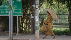 Siem Riep (AAcerbo) Tags: angkorwat siemriep cambodia buddhism buddhistmonk umbrella street walking barefoot