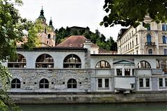 Ljubljana (sabinakurt62) Tags: ljubljana slovenia slovenija europa beautiful travel art metelkova thedragonbridge ljubljanicariver presernsquare triplebridge ljubljanacastle musicartcenter buchersbridge nikon sabinakurt photography