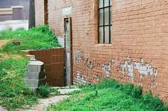 Old Door (Gabby Pike) Tags: film photography analog old weathered aged cracked peeling paint windows doors door window abandoned canon ae1 kodak ektar 100 broken