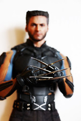 IMG_1811 (ShellyS) Tags: wolverine hottoys logan actionfigures sharp