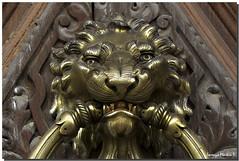 ZAMORA, TORO,LLAMADOR (DETALLE) (Lorenmart) Tags: zamora toro llamador leon puerta castillayleon españa spain bronce lorenmart canoneos550d