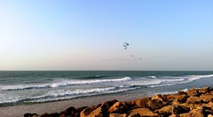 Sunset flight (2) (Irina.yaNeya) Tags: uae emirates ummalquwain sea landscape nature water sky summer sunset birds rocks waves beach shore coast eau mar paisaje naturaleza agua cielo verano puestadelsol aves rocas olas playa costa الامارات أمّالقيوين بحر طبيعة ماء سماء الصيف غروب طيور أمواج شاطئ оаэ эмираты море пейзаж природа вода волны лето небо закат птицы камни пляж берег