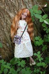 IMG_8260 (Cleo6666) Tags: lana lillycat cerisedolls marron glacé bjd doll chibbi