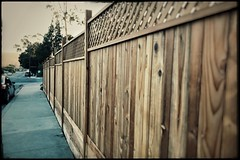 new fence [Day 3119]