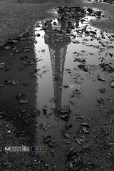 The Tour Eiffel (massimomarson) Tags: parigi paris francia france europa europe città city 2014 summer visit tourism turismo travel viaggi architettura architecture toureiffel torreeiffel biancoenero bw monocromatico monocrome puddle riflesso reflection
