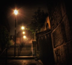 The Vennel, Edinburgh (xDigital-Dreamsx) Tags: street walkway walk light city scotland scenery scenic scottish lane lamps steps walls gate trees nightsky night lothian historic bars bar stone door edinburgh town dof capital national oldtown outside mysterious atmosphere dramatic gloom enchanting