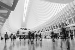 Rush (John St John Photography) Tags: streetphotography candidphotography worldtradecenter path station church street newyorkcity newyork commuters passengers rush hour slowshutterspeed motion blur oculus people peopleofnewyork bw blackandwhite blackwhite blackwhitephotos johnstjohn