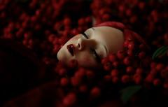 poison sleep (dolls of milena) Tags: bjd abjd resin doll art portrait rowan red elfdoll emma sleeping reminisce