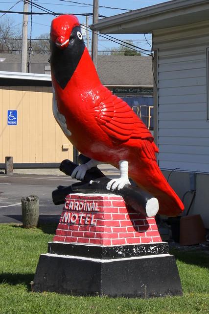 Cardinal Motel - Bowling Green, KY