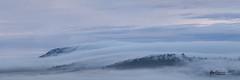 Fog Rolling In (R. Francis) Tags: fog sunrise prestbury felton feltonvalley qld queensland southeastqueensland southbrook ryanfrancis ryanfrancisphotography mtrubislaw
