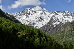 IMG_1260 (kevindalb) Tags: italia 2017 piemonte val vogna valvogna valsesia montagna montagnes mountains rivavaldobbia