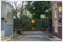 New York. Staten Island (Mika Stetsovski) Tags: usa сша ньюйорк newyork nyc staten island