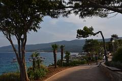 sDSC_5646 (L.Karnas) Tags: summer sommer juli july 2017 croatia hrvatska kroatien istrien istria istra rabac porto albona