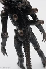 _DSC0975 (ZeroToyz) Tags: alien thedrone エイリアン revoltech 山口式 海洋堂 海洋堂山口式