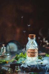 Weightlessness Potion (Dina Belenko) Tags: flower art beauty retro style floral artistic color conceptual fineart flora plant antique vintage composition fragrance dandelion seed nature dark beautiful green wind blowball fluffy black natural space weed dream fantasy flying gently imagination magical tender detail fine stilllife magic potion gravity weightless weighing nonsense vain summer medical medicine