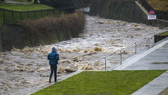 Leith Stream in flood (Ian@NZFlickr) Tags: leith stream flood speight otago univercity uni dunedin nz