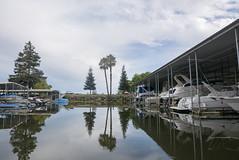 the marina (Michael Brooking Photography) Tags: marina boats reflections waterfront water stocktoncalifornia delta michaelbrookingphotography