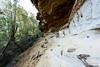20170709-10-Bluff River Gorge sandstone cliffs (Roger T Wong) Tags: 2017 australia bluffrivergorge buckland rogertwong sel1635z sony1635 sonya7ii sonyalpha7ii sonyfe1635mmf4zaosscarlzeissvariotessart sonyilce7m2 tasmania bushwalk caves cliff erosion gorge hike outdoors sandstone tramp trek walk