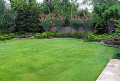04 (KIẾN TRÚC XANH CARA) Tags: thiết kế và bố trí cảnh quan sân vườn