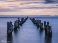 Remains of an old jetty (K Yew) Tags: vic cliftonsprings cliftonspringsoldjetty oldjetty sunset
