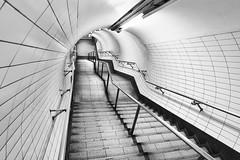 Anguish (Douguerreotype) Tags: monochrome underground tiles lines city bw station uk metro british england tunnel blackandwhite mono subway stairs architecture london britain gb urban steps tube