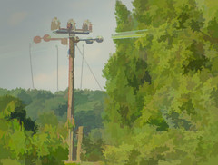 Trees, Wires & Telegraph Pole (M C Smith) Tags: pentax k3 pole wires green bushes sky blue clouds white