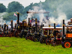 Row of Steam engines (Nigel Wallace1) Tags: weeting steamtrain steam rally rowof smoke engines steamengines power funnels olympus omdem1 40150 transport enthusiast meeting england
