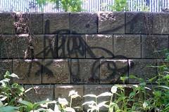 avenger 69 (Luna Park) Tags: ny nyc newyork revs graffiti lunapark tag avenger avenger69 69