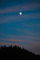 moonrise (viewsfromthe519) Tags: sunset sky evening nature stthomas ontario canada clouds orange blue yellow golden corn field farm moon