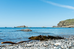 The UK's most southerly cove.... (AJFpicturestore) Tags: polpeor thelizard cornwall cornishscenery seaweed polpeorcove polpeorcafe alanfoster